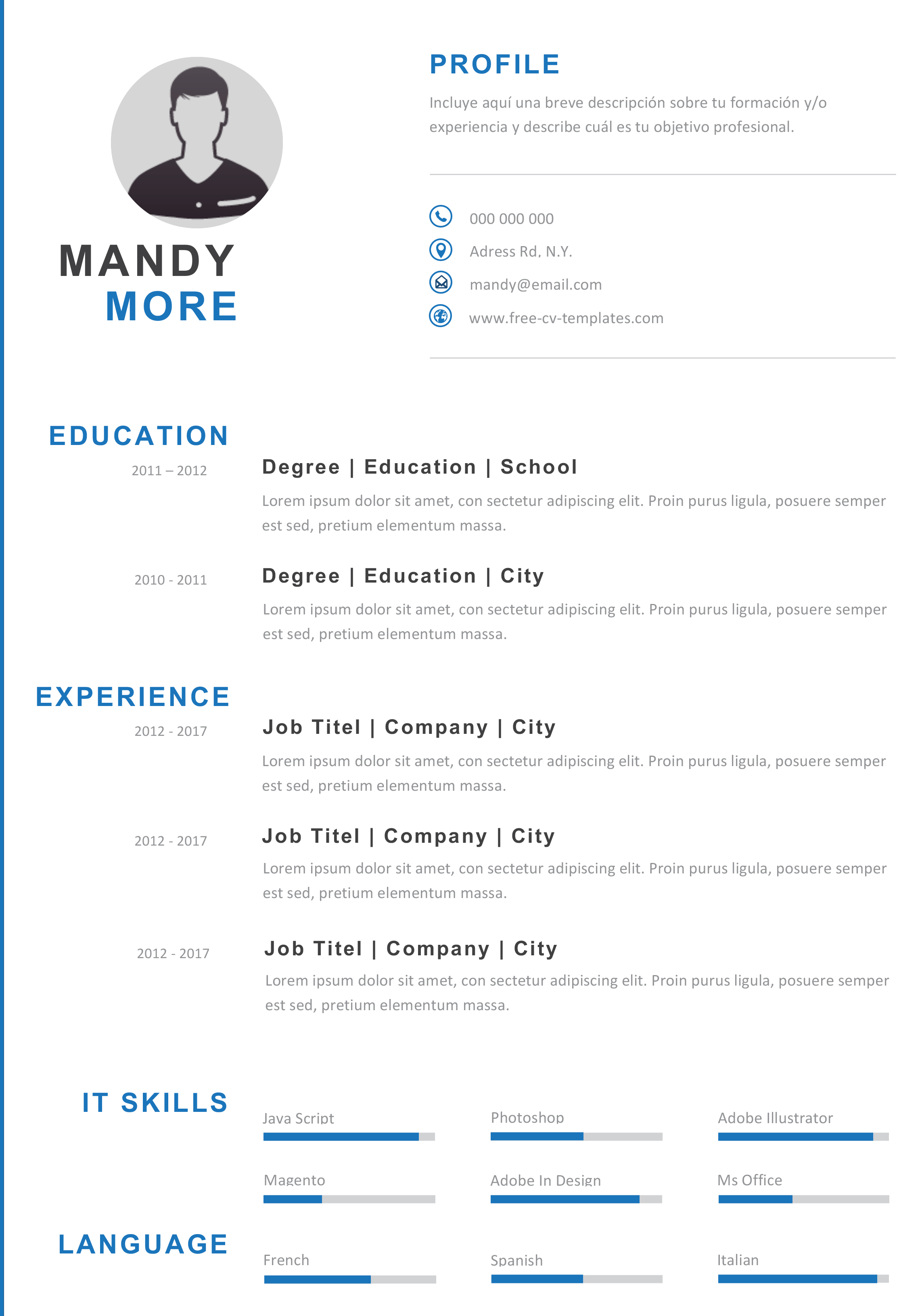 modern and effective cv template